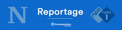 Kunskapsskolan Nederland reportage